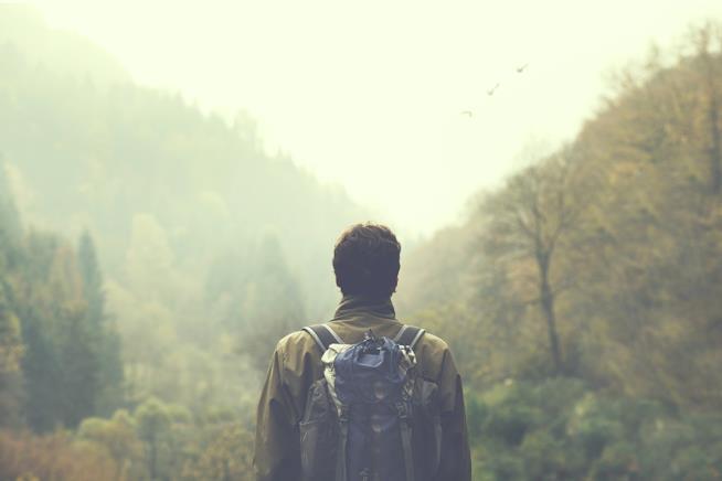 Uomo di fronte a una foresta