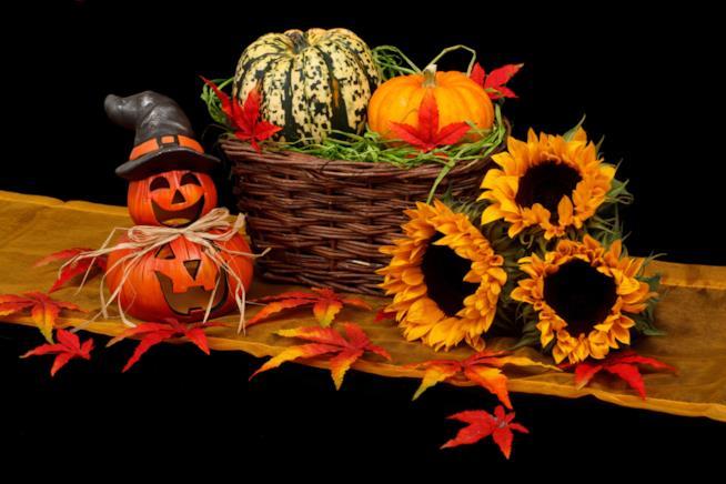 Zucche festa d Halloween