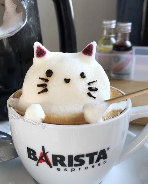 Un micio esce dalla tazza