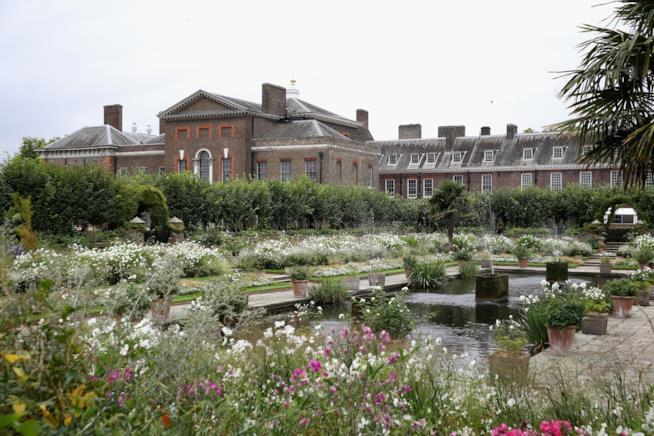 White Garden, il giardino preferito di Lady Diana