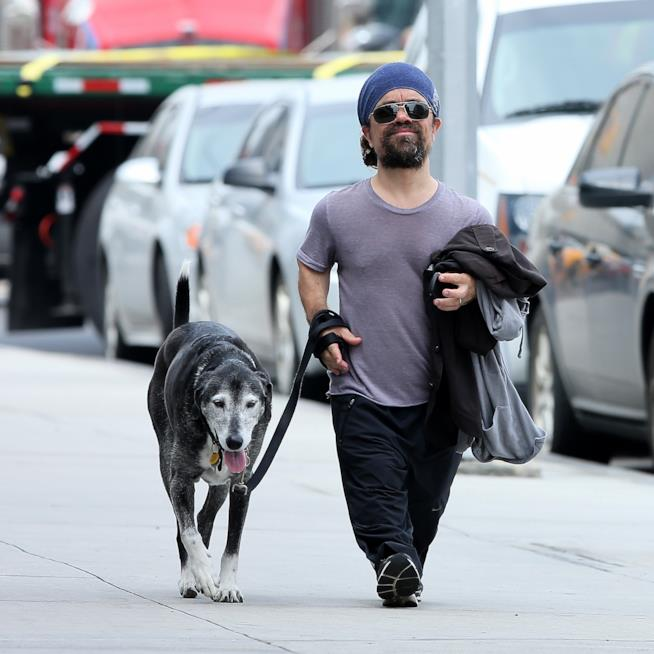 Peter Dinklage ed il suo cane