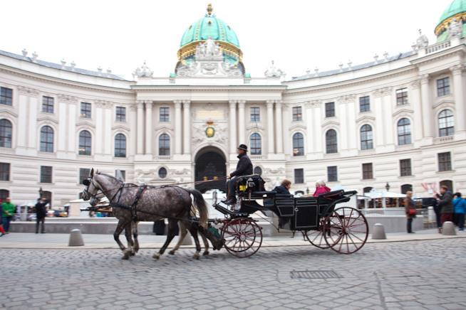 Tour in carrozza a Vienna
