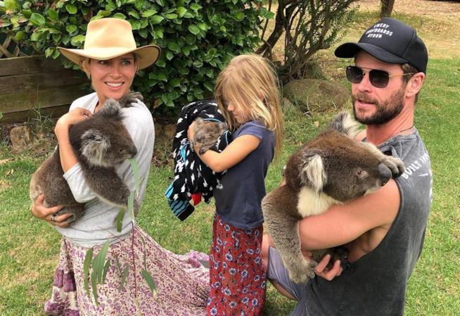 Chris Hemsworth e la sua famiglia tengono in braccio dei koala