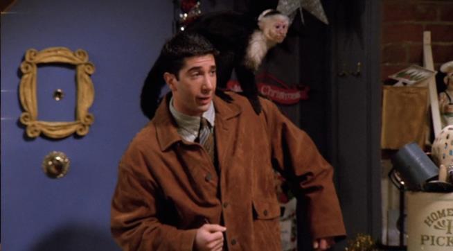 Marcel e Ross in una scena di Friends