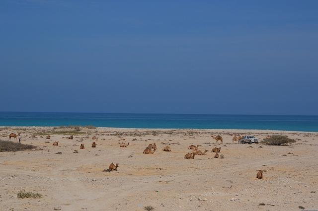 Spiaggia Oman