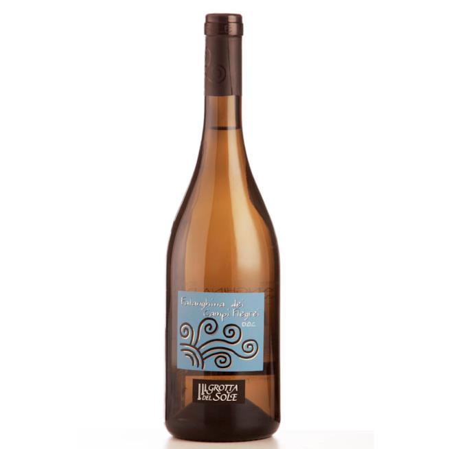 Bottiglia di Falanghina