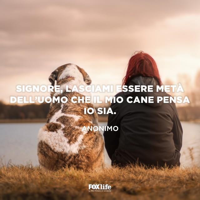 Donna di spalle seduta in riva al lago con il proprio cane