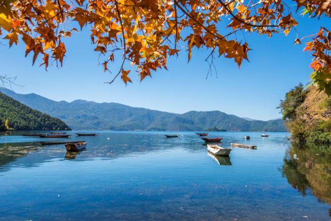 Lagu Lake