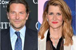 Bradley Cooper e Laura Dern
