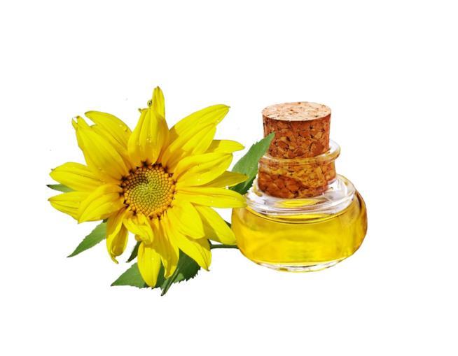 Gli utilizzi e le proprietà dell'olio di semi di girasole