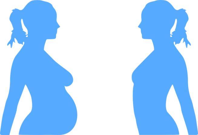 Disegno sulla gravidanza