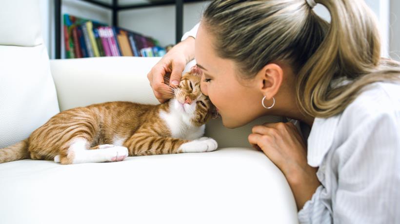 Ragazza coccola il suo gatto