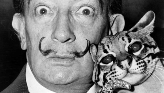 Salvador Dalì con un gatto