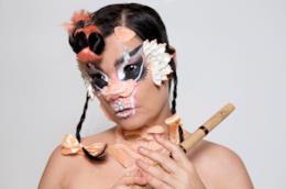 Il nuovo album di Björk è un inno al femminismo