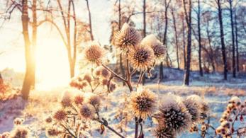 Luce solare nel solstizio d'inverno