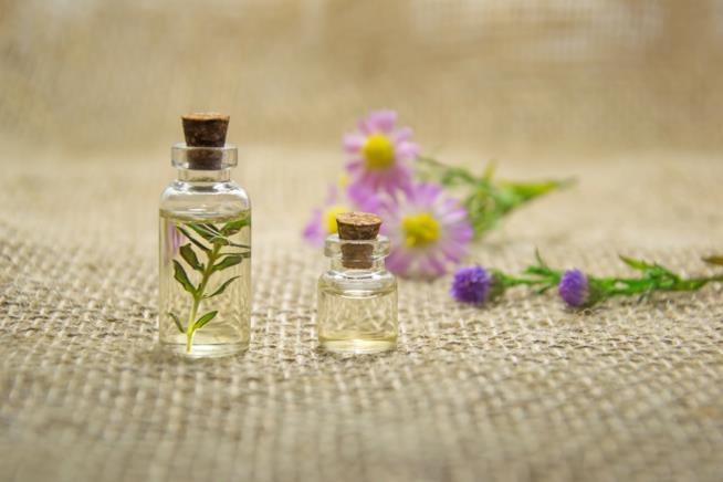 Barattolino con olio essenziale di semi di chia