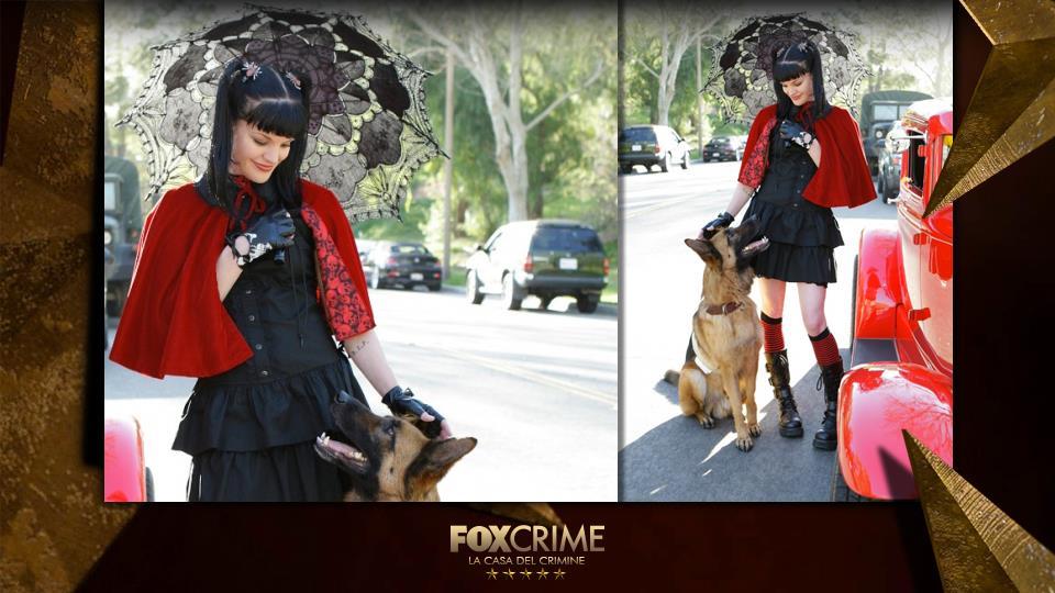 """Una moderna Cappuccetto Rosso con un """"temibile"""" cane lupo."""