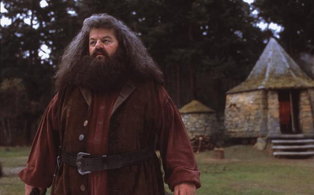 Rubeus Hagrid in Harry Potter
