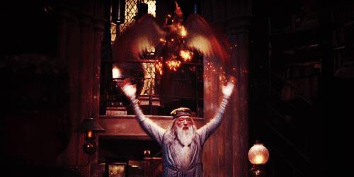 Michael Gambon in Harry Potter