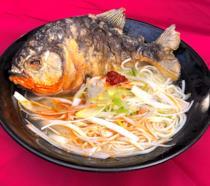 Il ramen di Piranha in Giappone