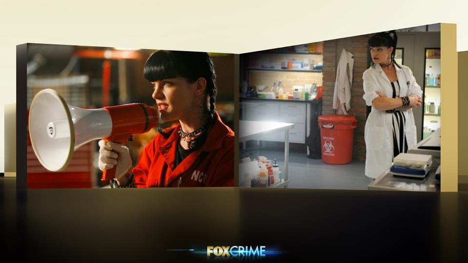 Non solo, Abby è l'unica di NCIS che si confida con Gibbs, nonché la sola che può ignorarlo.