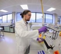 Scienziati al lavoro sulle staminali scheletriche