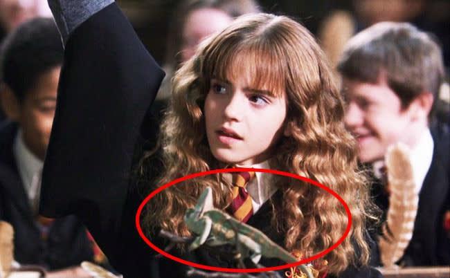 Curiosità dal secondo capitolo di Harry Potter