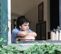 Timothée Chalamet (Elio) affacciato al davanzale della finestra in una scena del film