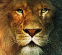 Il leone Aslan di Narnia