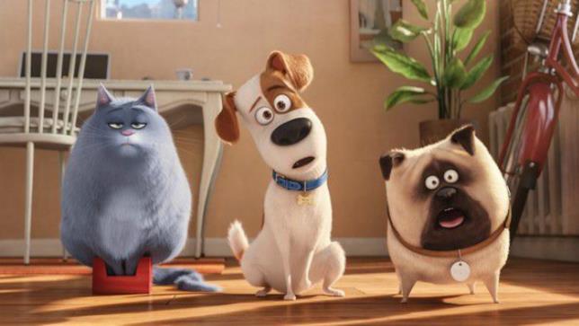I protagonisti di Pets: Vita da Animali