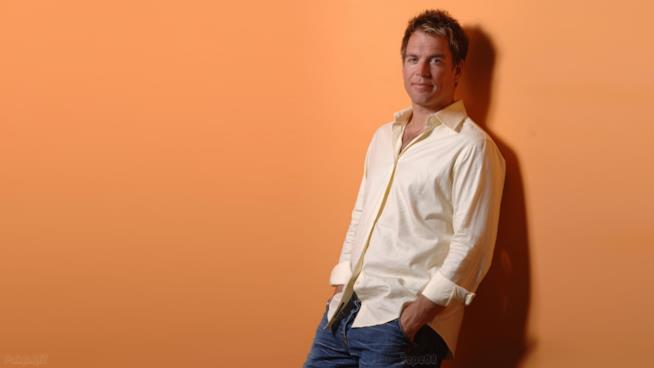 Michael Weatherly in posa