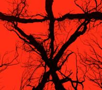 Al San Diego Comic-Con presentato Blair Witch, sequel del film