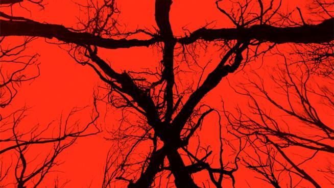 Al San Diego Comic-Con presentato Blair Witch, sequel del film