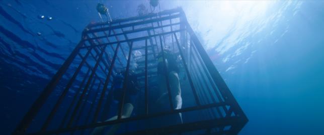 La gabbia d'acciaio nel film 47 Metri