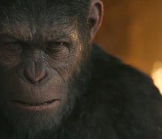 Cesare in una scena di The War - Il pianeta delle scimmie