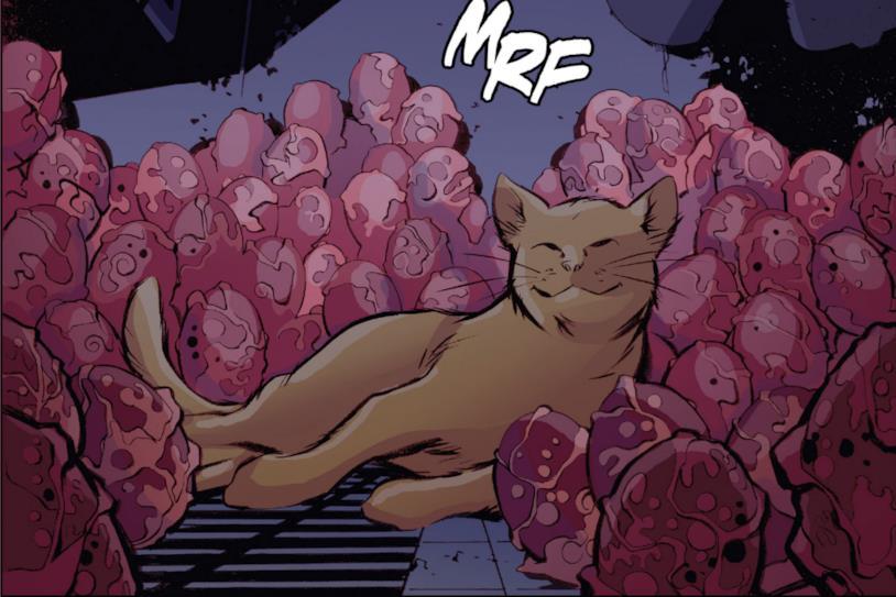 Il gatto alieno Marvel ha depositato le uova per riprodursi