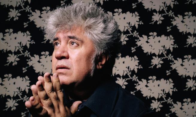 il regista Pedro Almodovar