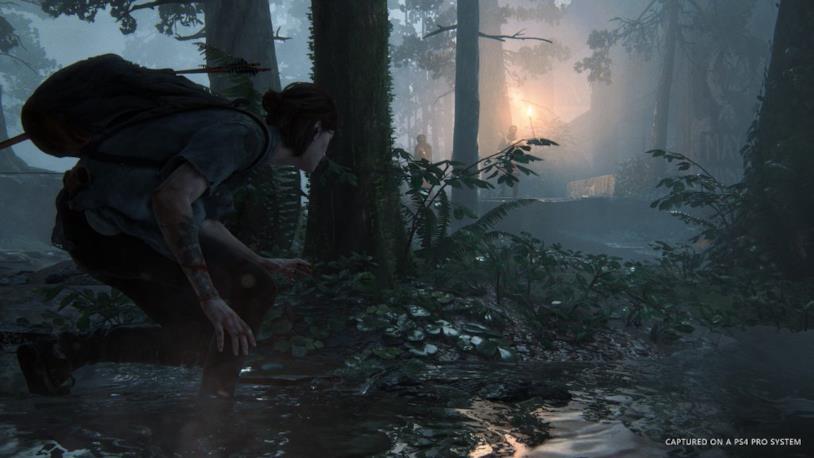 The Last of Us: Part II, uno screenshot di gioco