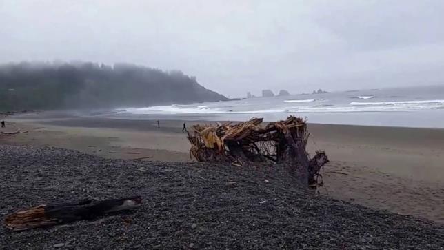 Spiaggia di La Push