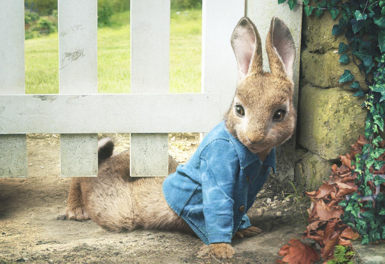Peter Rabbit, alcune immagini del film