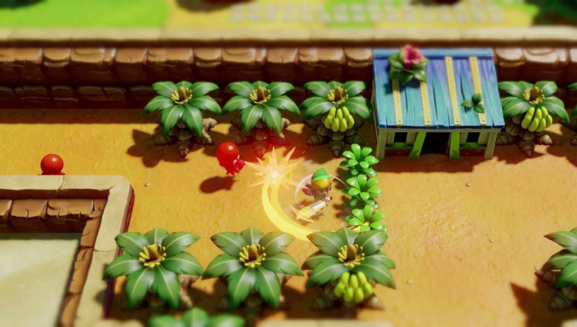The Legend of Zelda: Link's Awakening in uno screenshot di gioco
