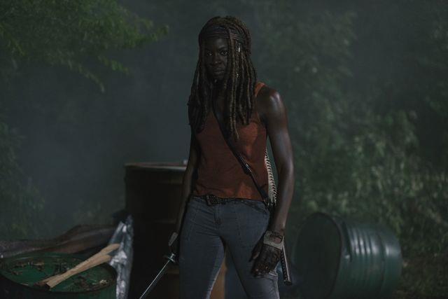 The Walking Dead 9: Michonne