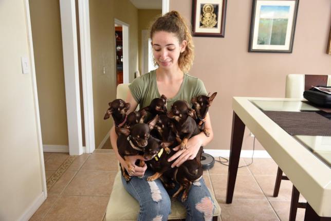 Milly e alcuni dei suoi cloni