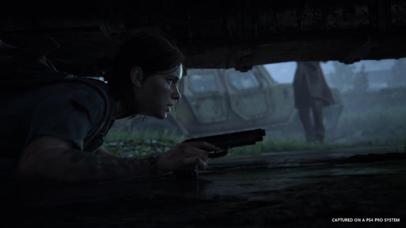 Ellie nascosta in una fase stealth di The Last of Us - Part II