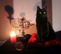 Il nuovo Salem del reboot di Sabrina