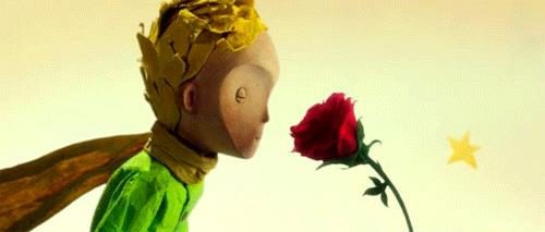 Il piccolo principe e la rosa