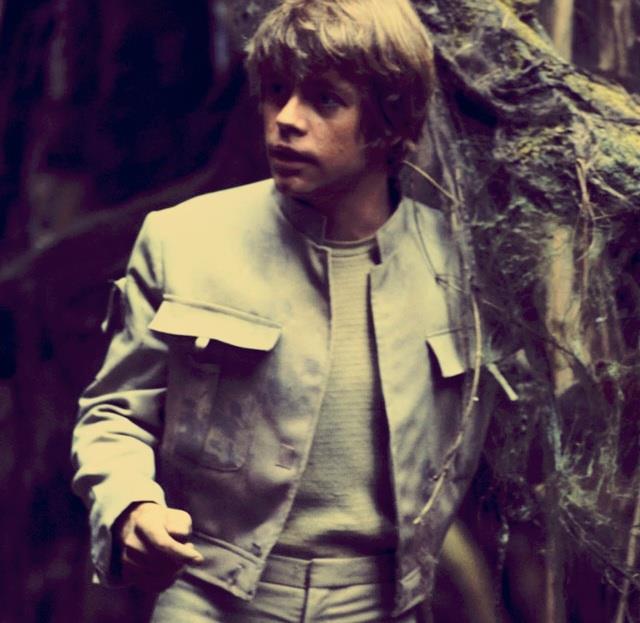 Mezzobusto di Mark Hamill nei panni di Luke Skywalker sullo sfondo di una foresta