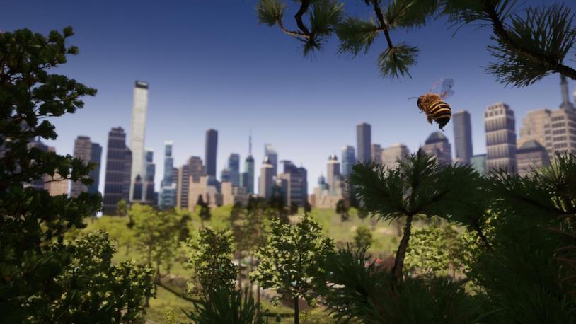 Un'immagine che mostra Bee Simulator