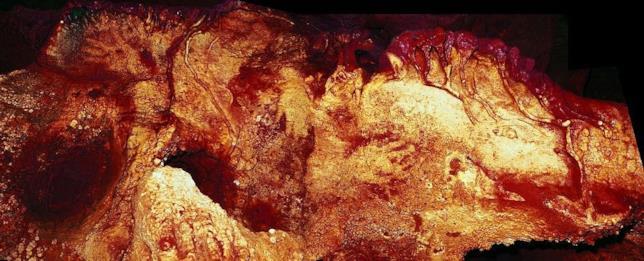 Mani disegnate con la tecnica Stencil nella grotta di Maltravieso