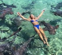 La modella morsa da uno squalo durante una foto